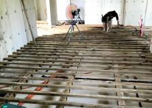 ~内部大工開始~ いよいよ内部大工の開始です^^ まずは床から。大引→根太→床材を貼っていき、以前の状態から大体40㎝程上がってきます。