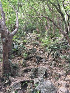 嘉津宇岳登山